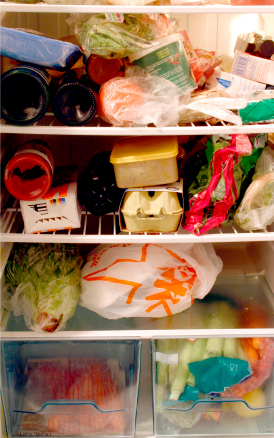 This is NOT Gayle's refrigerator.